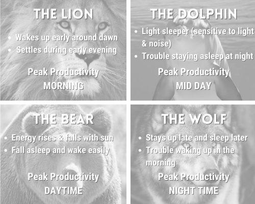 sleep chronotype descriptions